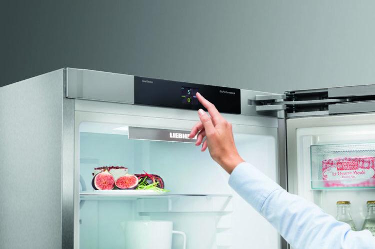 Особенности холодильников Либхер